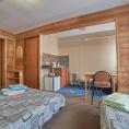 Благоустроенная гостиница (комната студия с кухней) двухместное/трехместное